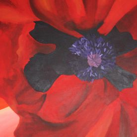 Red painted poppy on a large canvas wall art