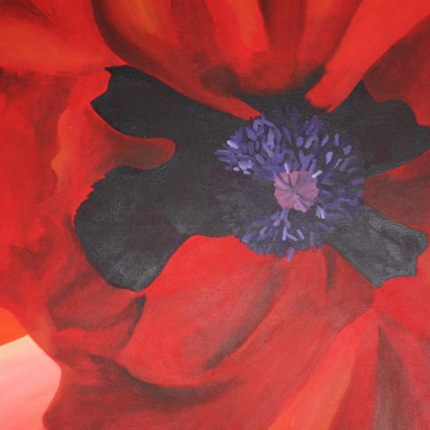 Acrylic painting of a large poppy on stretched canvas one off original