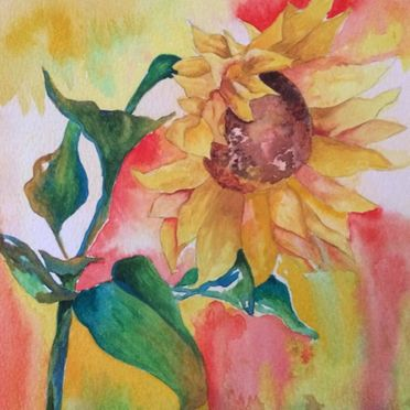 Watercolour study of sunflower, yellows, reds, greens, one off original