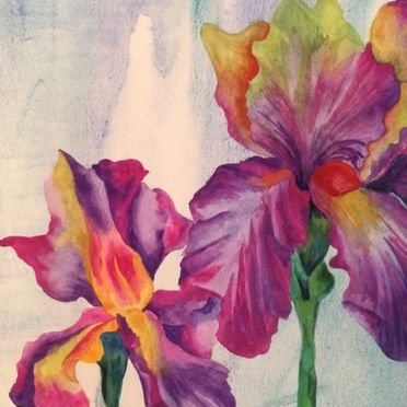 watercolour study of 2 irises on watercolour paper purple pink yellow one off original