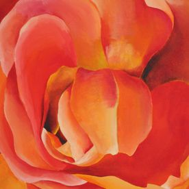 red yellow orange painted rose one off original canvas wall art